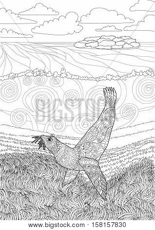 Hand drawn swimming seal with high details for anti stress coloring page, illustration in tracery style. Underwater seascape for relax coloring for grown ups. Vector.