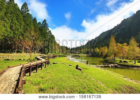 Beautiful lake scenery with winding trail and colorful trees in autumn