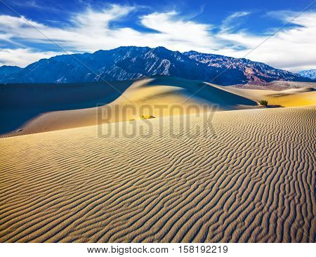 Picturesque part of Death Valley, USA. Mesquite Flat Sand Dunes. Small ripples on the sand dunes. Windy and hot morning in the desert