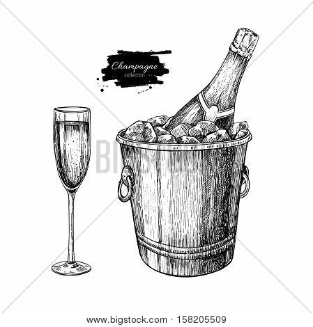 Champagne glassand bottle in ice bucket. Hand drawn isolated vector illustration. Alcohol drink in engraved style. Vintage Beverage sketch. Great for bar and restaurant menu, poster, banner. Celebration concept