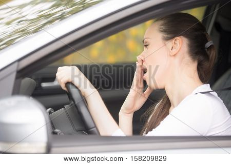 Young woman fell asleep during car ride, can't concentrate or feeling ill. Lady driver leaning on steering wheel, suffering whether from alcohol, poor sleep, new medication, or having horrible cold