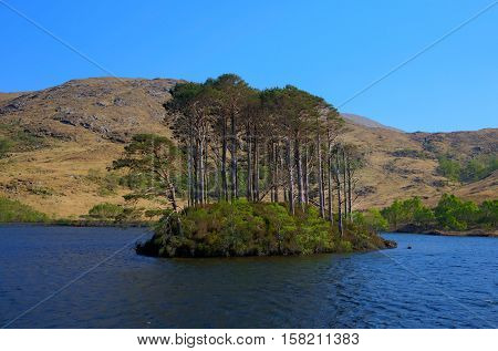 Lake island Loch Eilt Lochaber West Highlands of Scotland near Glenfinnan and Lochailort and west of Fort William