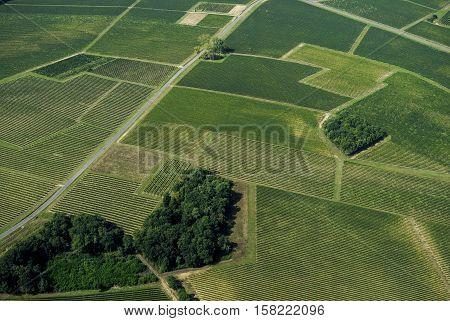 Aerial View Of Bordeaux Vineyard, France