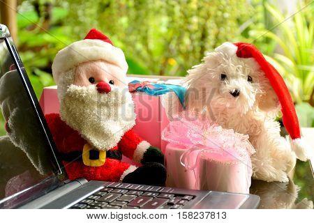 Santa and dog doll wear the christmas hats