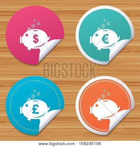 Round stickers or website banners. Piggy bank icons. Dollar, Euro and Pound moneybox signs. Cash coin money symbols. Circle badges with bended corner. Vector