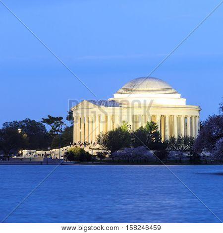 the Jefferson Memorial during the Cherry Blossom Festival in twilight scene. Washington DC