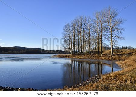 View over calm water in a lake with litle thin ice blue sky and some tree standing ner the shore picture from the North of Sweden.