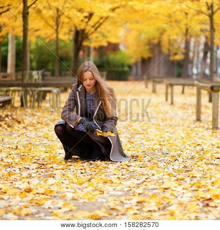 Beautiful Girl Gathering Autumn Leaves In Park
