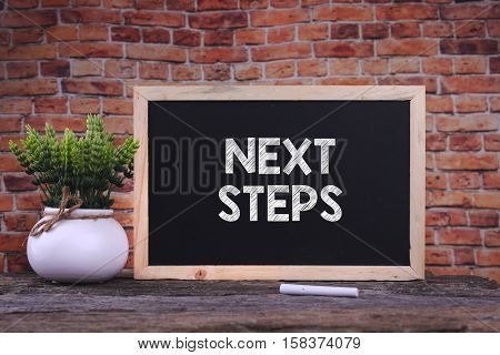 NEXT STEPS word on blackboard with green plant