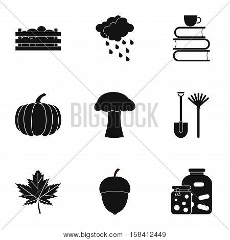 Autumn coming icons set. Simple illustration of 9 autumn coming vector icons for web