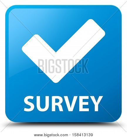 Survey (validate icon) cyan blue square button