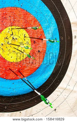 Arrows sport bow stick in the target s