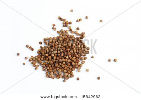 dried coriander fruit
