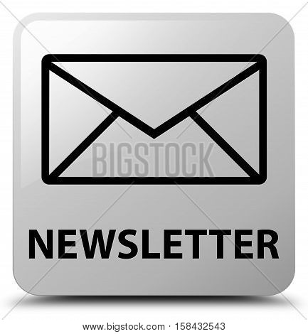 Newsletter (email icon) on white square button
