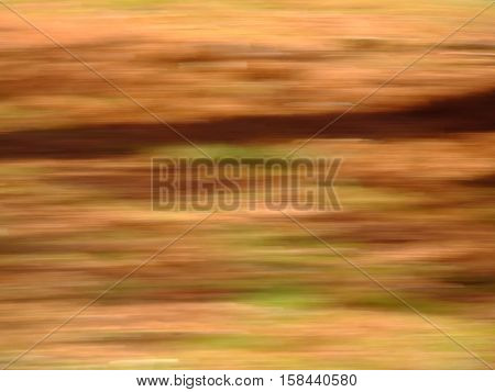 Blur of natural leaf colors in the Fall specifically oranges reds greens and yellows. Suitable for background or abstract.