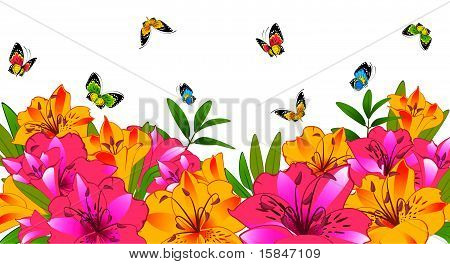 The beautiful Lily with butterflies on a white background