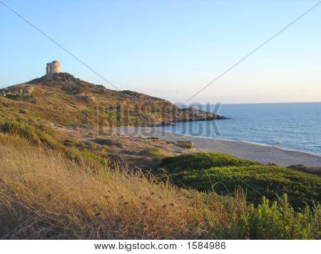 Beach With Savana, Barca, Sardinia, Italy