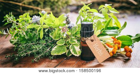 Variety Of Herbs And Oil On Wooden Background