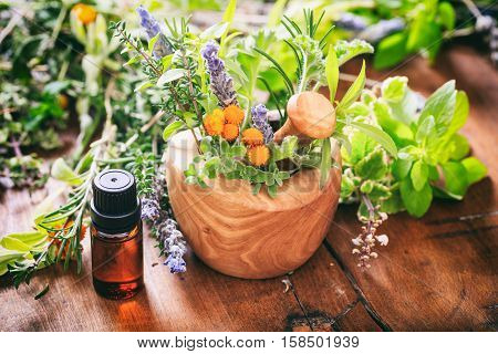 Variety Of Herbs And Mortar On Wooden Background