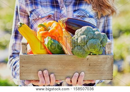 Woman With Fresh Organic Vegetables From Farm