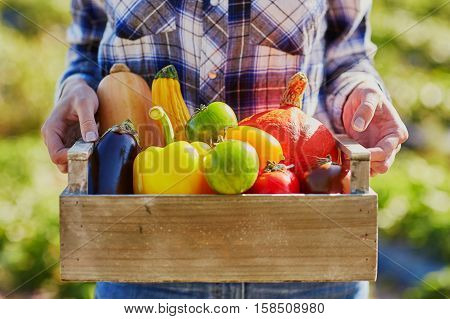 Woman With Wooden Crate Of Vegetables