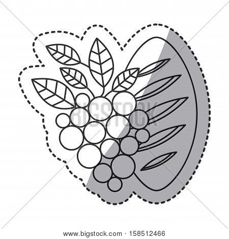 Grapes and bread icon. Religion god pray faith and believe theme. Isolated design. Vector illustration