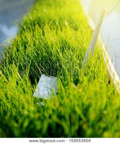 Modern LTE USB Wi Fi Adapter in green grass - concept for green an environmentally friendly spectre of wireless network