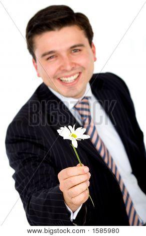 Business Man Offering A Flower