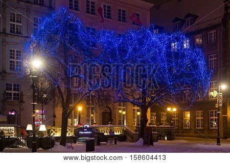 POLAND GDANSK - DECEMBER 30 2014: Trees in the festive decorations on Long Market (Dlugi Targ) street before Christmas. Gdansk is a Polish city on the Baltic coast and popular center of tourism.