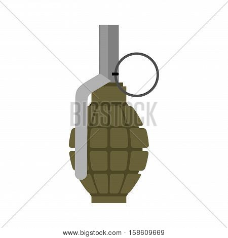Military Grenade Green. Army Explosives. Soldiery Ammunition. War Explosive Bombshell