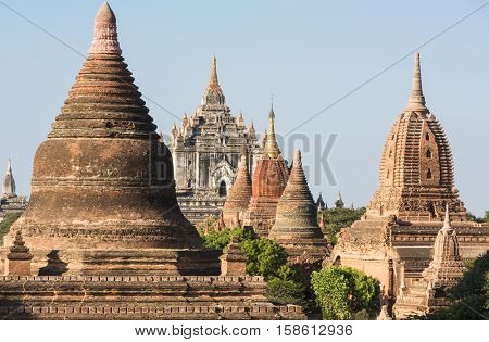 Late afternoon sun shines on old pagodas, even on the largest Thatbyinnyu Temple in the ancient city of Bagan, Myanmar