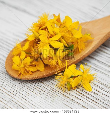 Saint-john's-wort In The Spoon