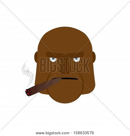 Angry Man With Cigar. Aggressive African Face