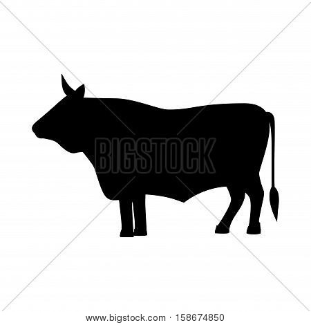 monochrome image with big bull vector illustration