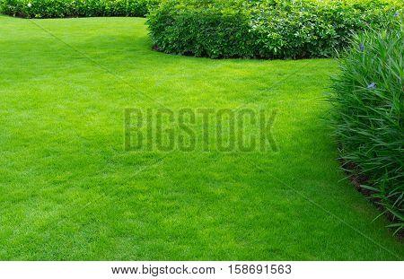 Landscaped Formal Garden,front yard with garden design,Peaceful Garden