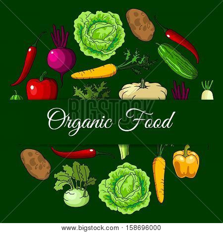 Vegan organic vegetables food. Vector vegetarian healthy diet eating poster of bio fresh cabbage, cucumber, kohlrabi, carrot, potato, squash, daikon, radish, beet, chili pepper