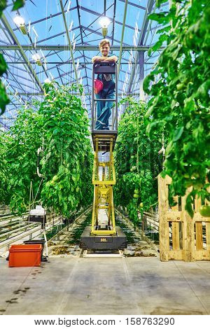 Friendly farmer working on hydraulic scissors lift platform in greenhouse.