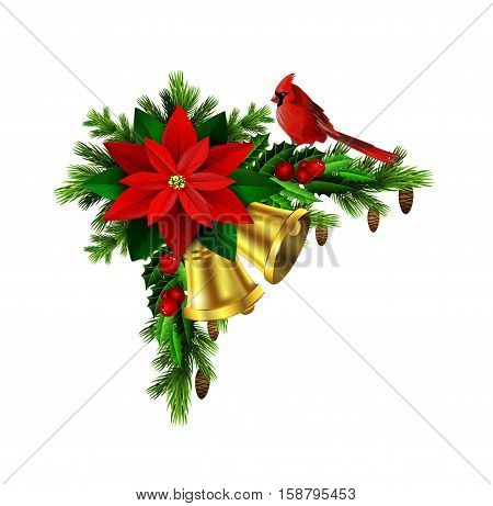 Christmas decoration with evergreen treess holly and pinecone and poinsettia and golden bells isolated cardinal bird