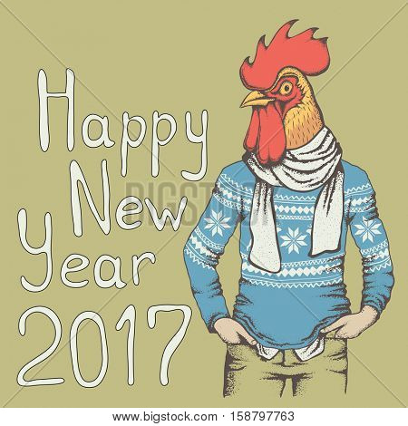 Rooster vector illustration. Rooster in human sweatshirt. 2017 new year of the rooster