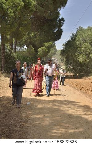 Huelva, Spain - June 5, 2014: Pilgrims on the way of the pilgrimage among the pines of the countryside of Huelva Spain.