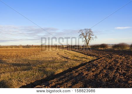 Plowed Soil And Straw Stubble
