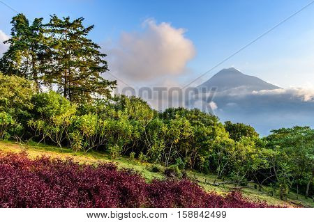 View of Agua volcano outside Spanish colonial town & UNESCO World Heritage Site of Antigua in Panchoy Valley, Guatemala, Central America