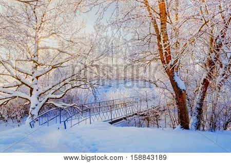 Winter landscape in vintage tones - winter frosty trees and snowy winter iron bridge in the winter park. Winter landscape background. Winter nature with winter snowy trees. Winter landscape snowy view
