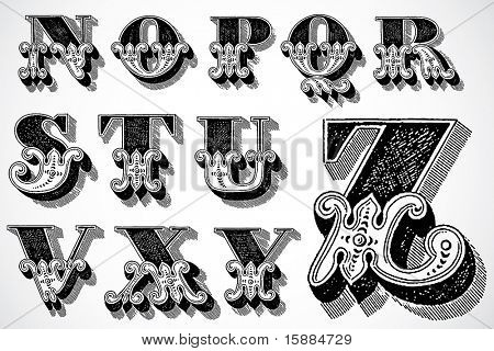 Vector Decorative Alphabet - N-Z