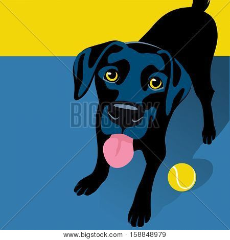 vector illustration of a happy playful Black Labrador Retriever. Space for text. For posters, cards, banners, t-shirts