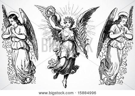 Vector Angels