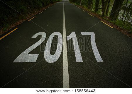 Happy New Year 2017 against country road