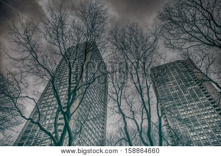 skyscrapers on a background of dark sky. two high-rise buildings, gray sky, a flock of birds and the bare branches of trees. the concept of the nuclear winter