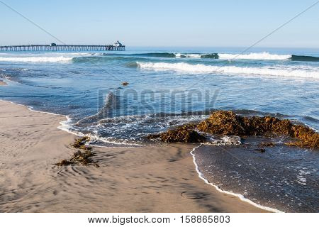 Imperial Beach, California with seaweed on beach and crashing waves.