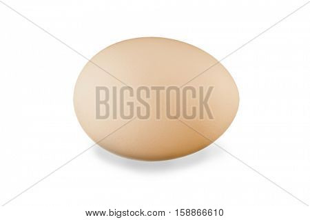 Close-up image of egg studio isolated on white background